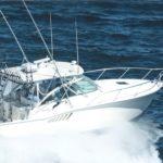 Salmon Fishing Boat